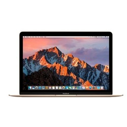 Apple MacBook (12 inch, late 2018)